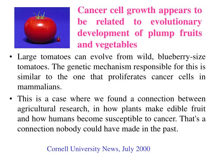 Cancer cell growth appears to be related to evolutionary development of plump fruits and vegetables