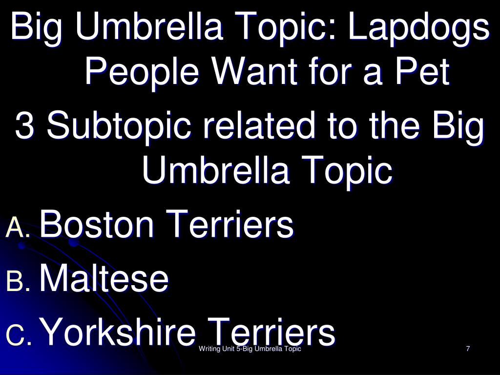 Big Umbrella Topic: Lapdogs People Want for a Pet