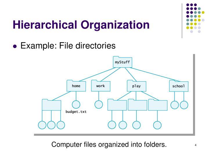 Hierarchical Organization