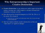 why entrepreneurship is important creative destruction