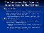 why entrepreneurship is important impact on society and larger firms