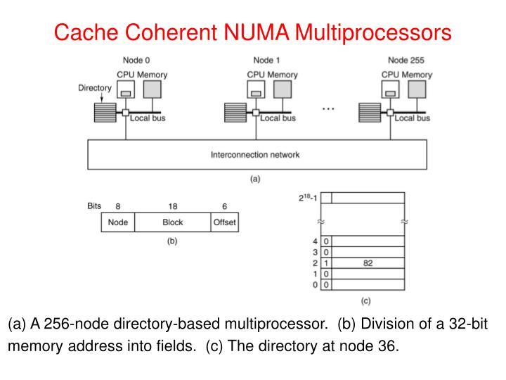Cache Coherent NUMA Multiprocessors