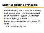 exterior routing protocols1