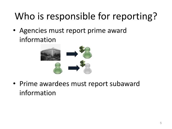Who is responsible for reporting?