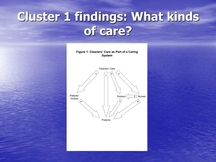 Cluster 1 findings: What kinds of care?