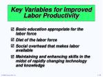 key variables for improved labor productivity