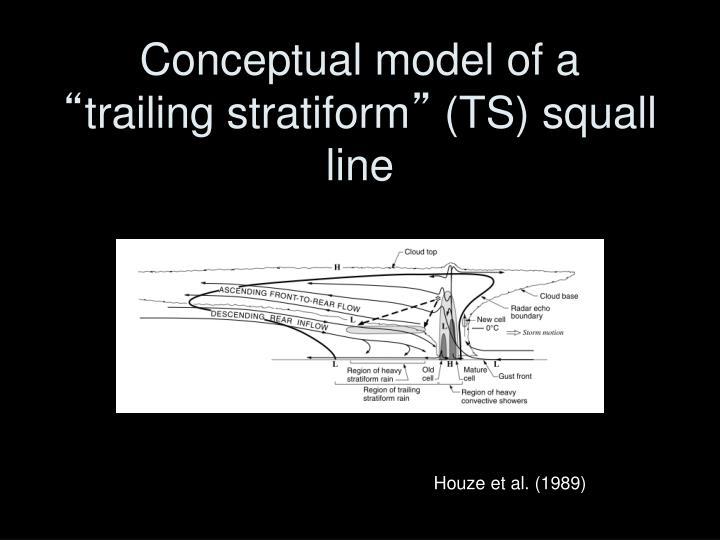 Conceptual model of a