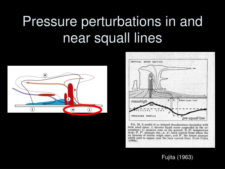 Pressure perturbations in and near squall lines