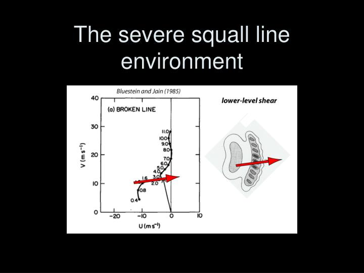The severe squall line environment