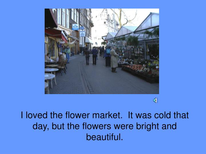 I loved the flower market.  It was cold that day, but the flowers were bright and beautiful.