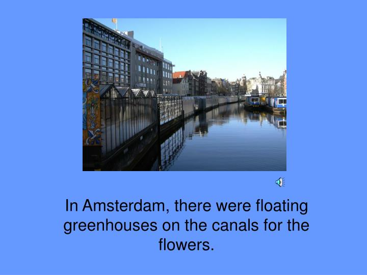 In Amsterdam, there were floating greenhouses on the canals for the flowers.