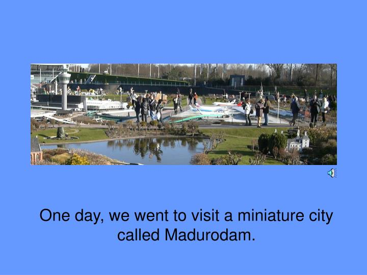 One day, we went to visit a miniature city called Madurodam.