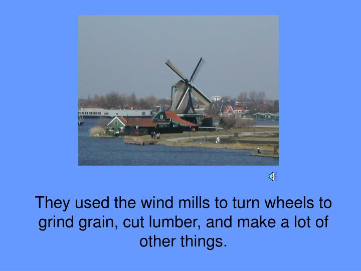 They used the wind mills to turn wheels to grind grain, cut lumber, and make a lot of other things.