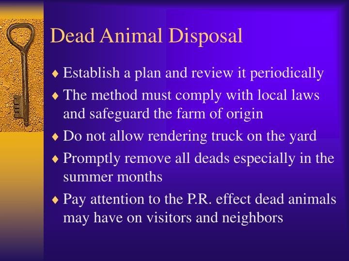 Dead Animal Disposal