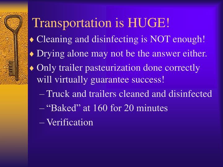 Transportation is HUGE!