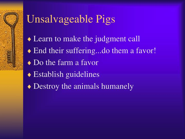 Unsalvageable Pigs