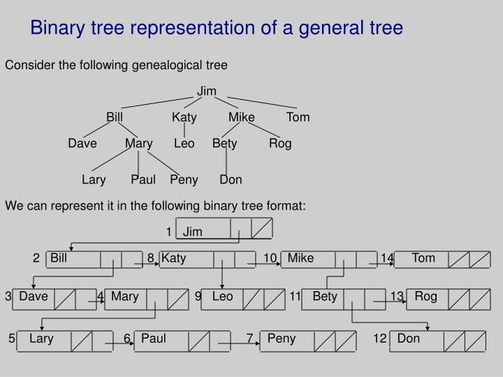 Binary tree representation of a general tree