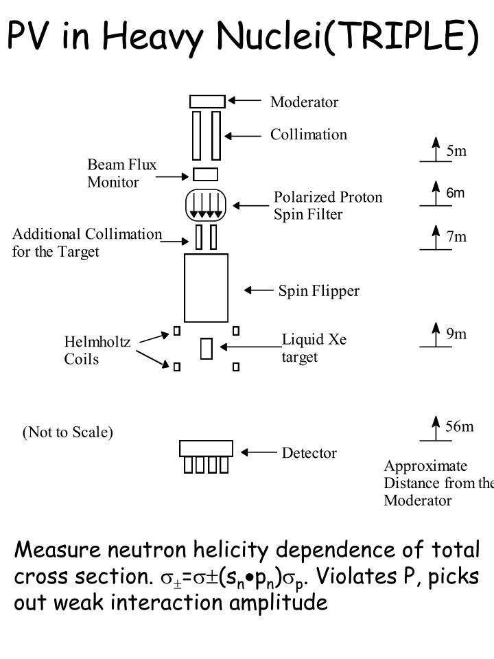 PV in Heavy Nuclei(TRIPLE)