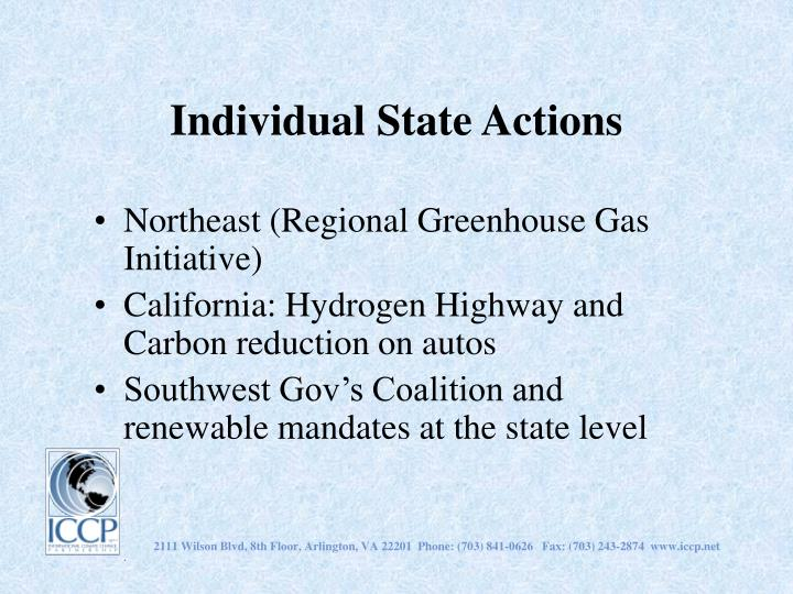 Individual State Actions