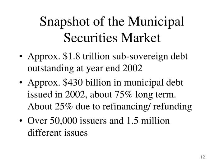 Snapshot of the Municipal Securities Market