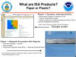 what are iea products paper or plastic