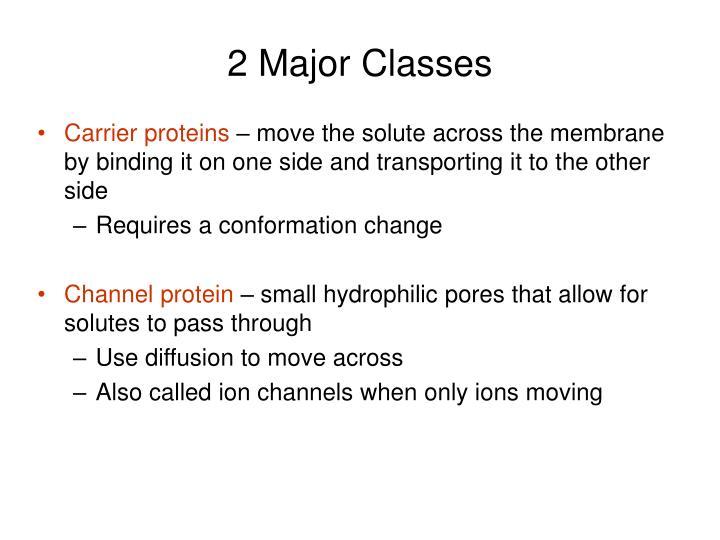 2 Major Classes