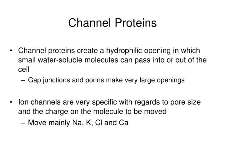 Channel Proteins