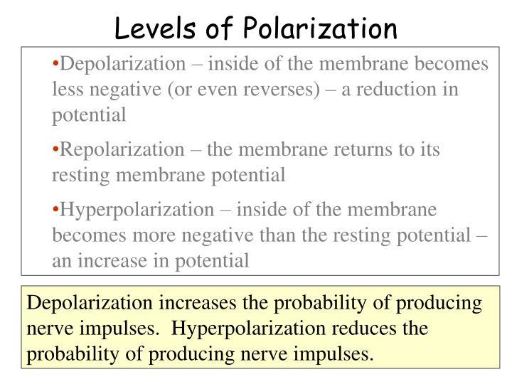Levels of Polarization