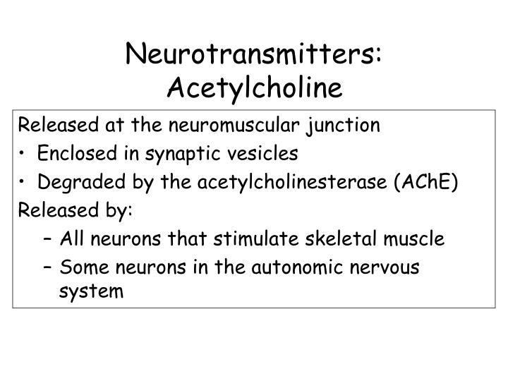 Neurotransmitters: Acetylcholine