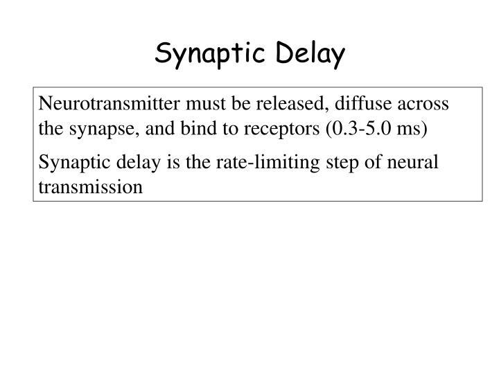 Synaptic Delay