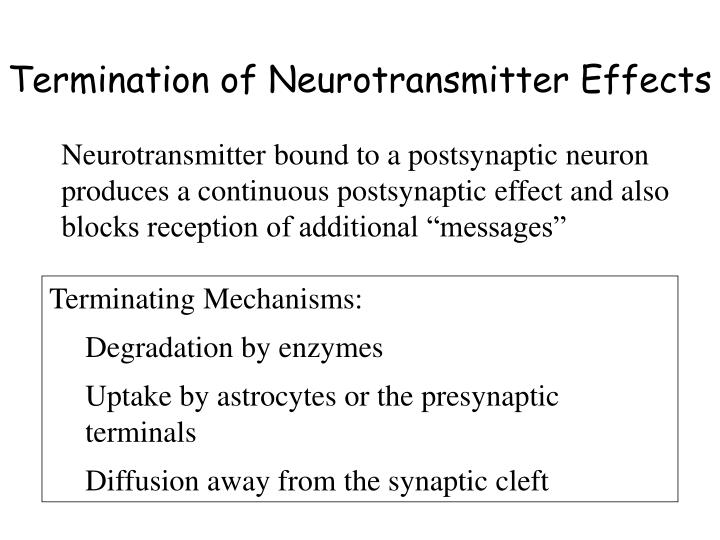 Termination of Neurotransmitter Effects