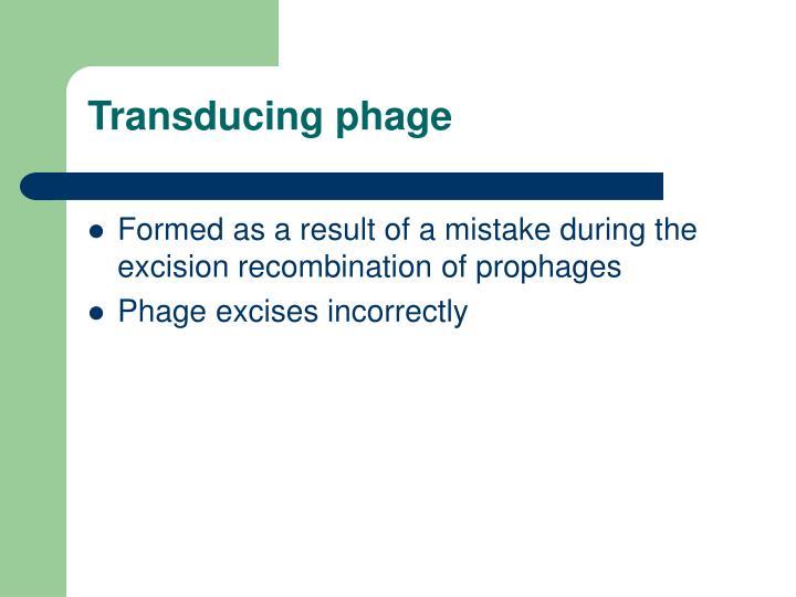 Transducing phage