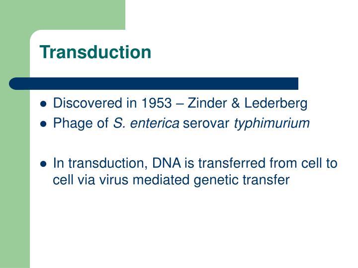 Transduction1