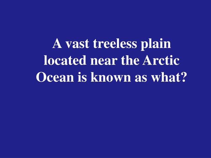 A vast treeless plain located near the Arctic Ocean is known as what?