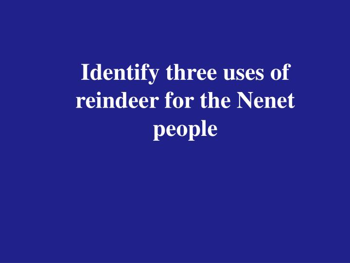Identify three uses of reindeer for the Nenet people