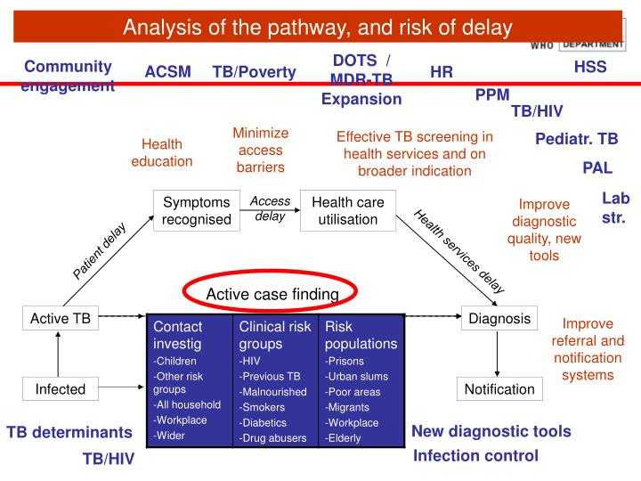Analysis of the pathway, and risk of delay