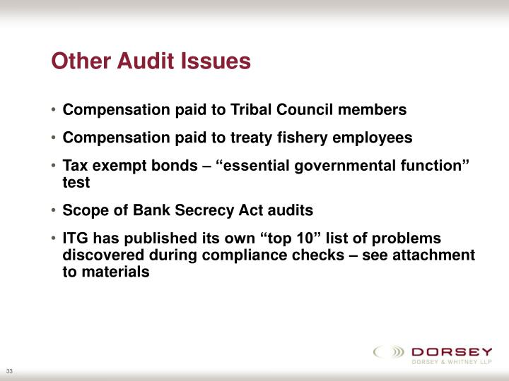 Other Audit Issues