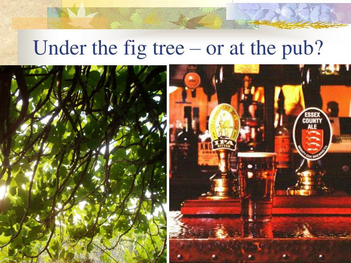 Under the fig tree – or at the pub?