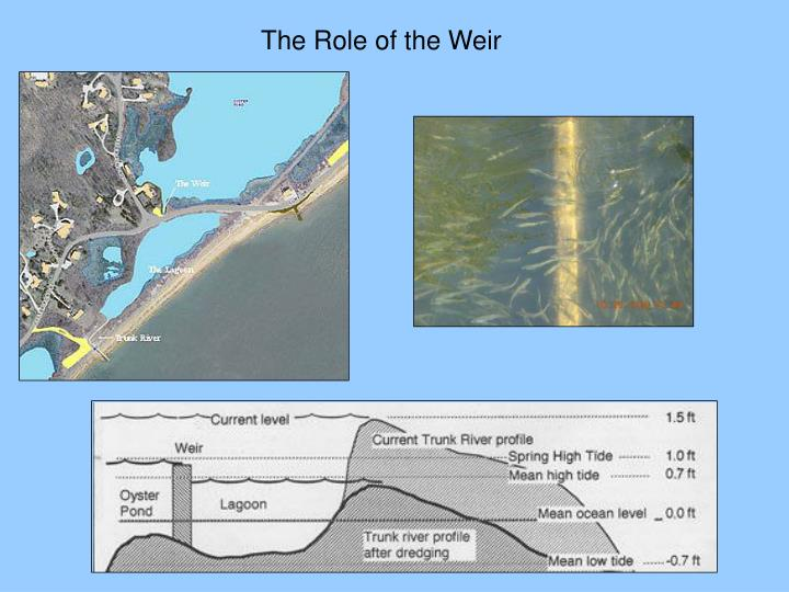The Role of the Weir
