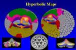 hyperbolic maps