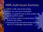 xbrl audit issues summary