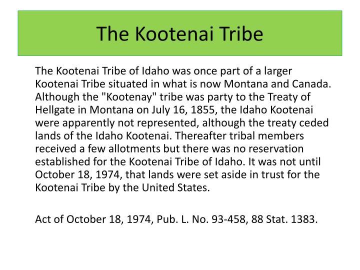The kootenai tribe