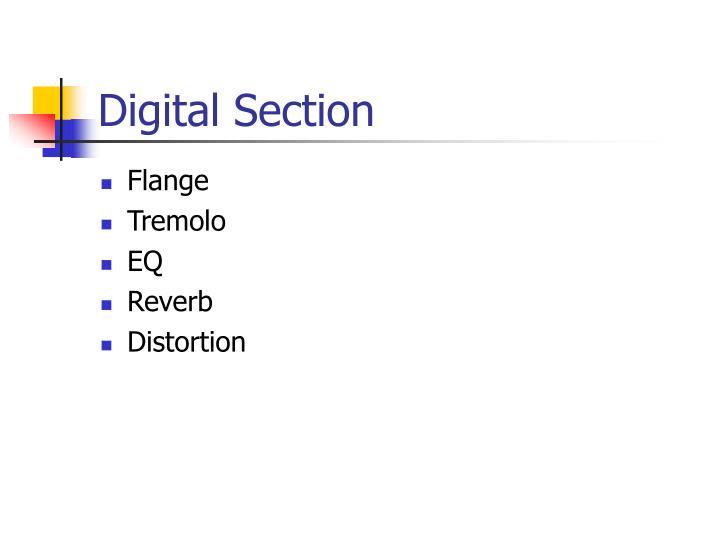 Digital Section