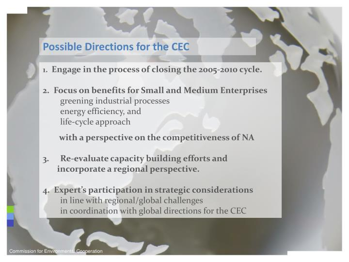 Possible Directions for the CEC