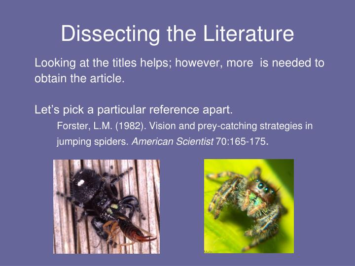 Dissecting the Literature