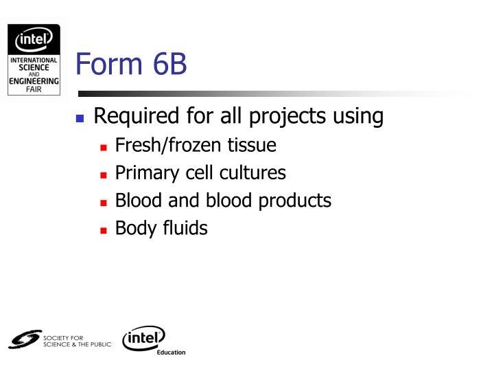 Form 6B