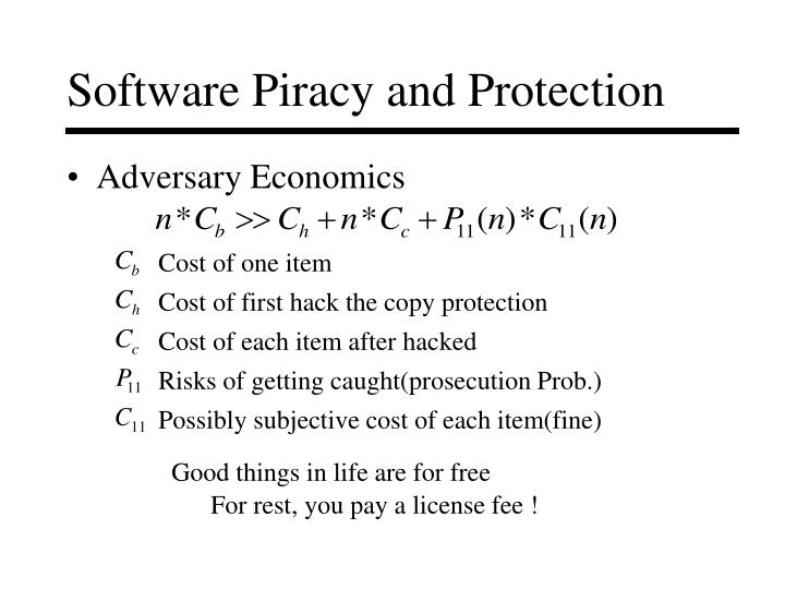 Software Piracy and Protection