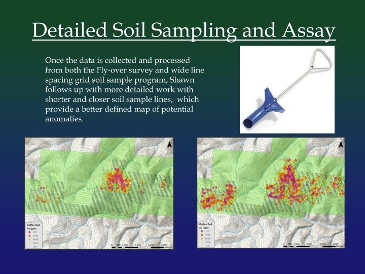 Detailed Soil Sampling and Assay