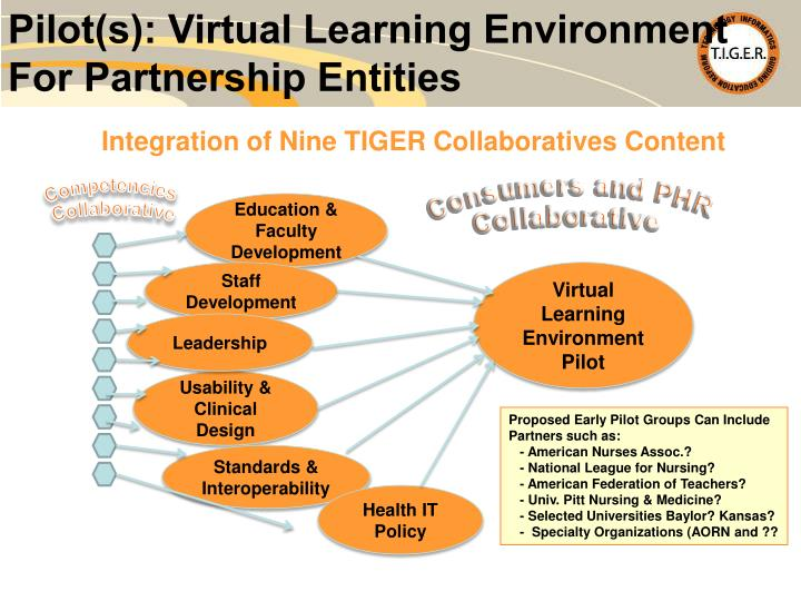 Pilot(s): Virtual Learning Environment
