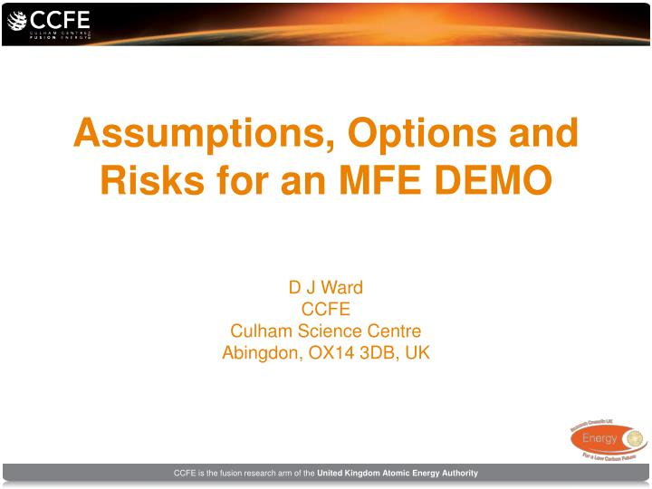 Assumptions options and risks for an mfe demo